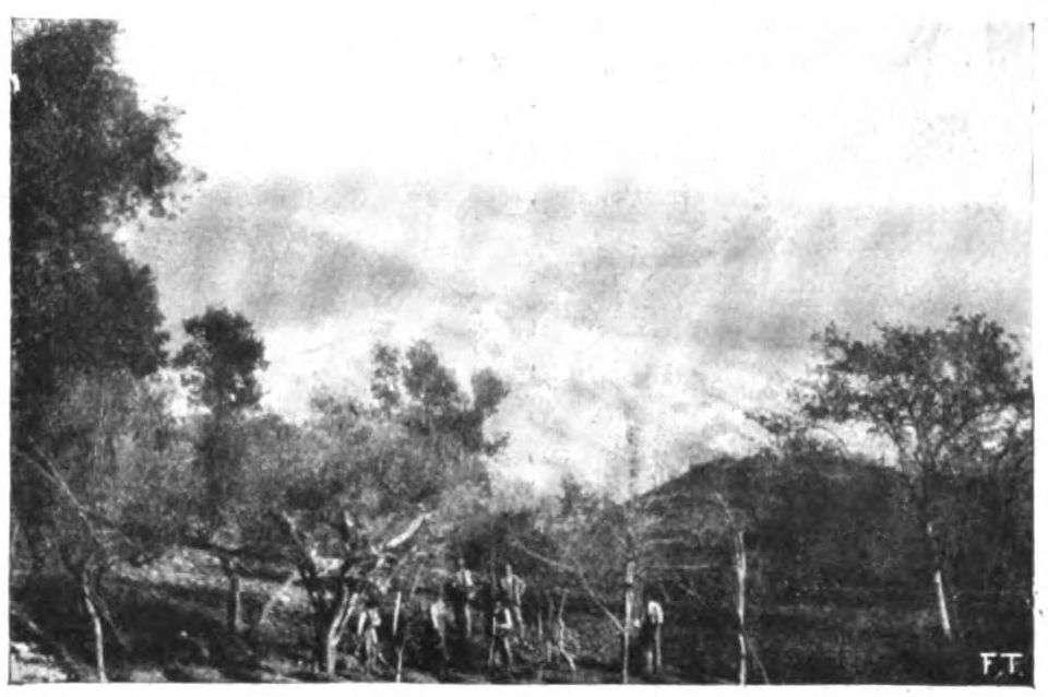 Panorama della Val d'Era a nord del manicomio.